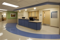DMC Rehabilitation Institute of Michigan | Marsh Construction